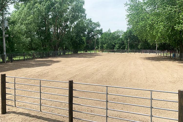 horse arena8