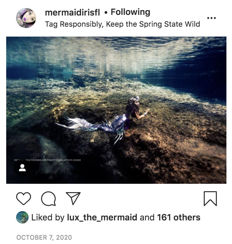 Mermaid Iris