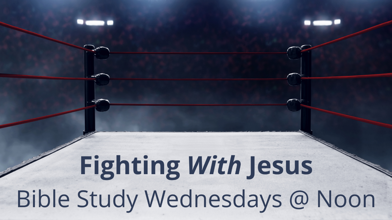 thumbnail_Fighting With Jesus A Different Look at Conflict