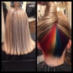 Unique hair under coloring - Northern VA Salons