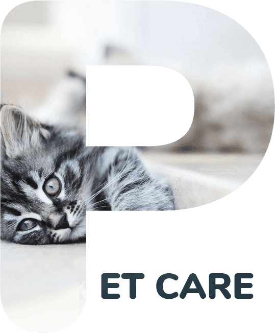 In Home Pet Care