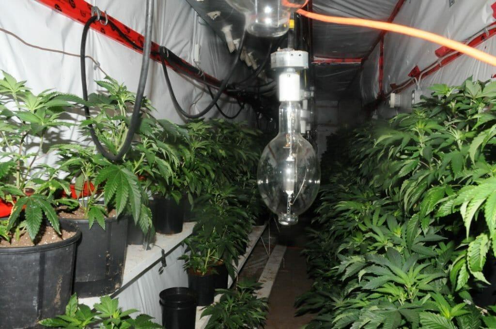 CFSEU-BC uncovers another underground marijuana grow-op