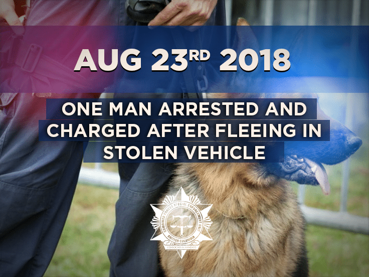 One Man Arrested and Charged after fleeing in Stolen Vehicle
