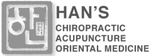 hans chiropractic elgin and palatine
