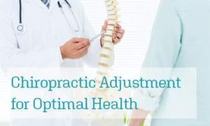 Image of Chiropractor explaining spine anatomy