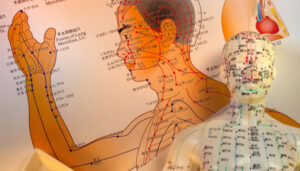image of acupuncture points