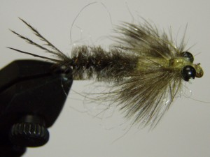 J.P'S Mayfly Nymph