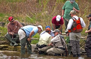 Insect-Identification-Section-River-Casting-Portion-of-Learn-To-Fly-Fish-Corporate-Lesson-on-the-Grand-River