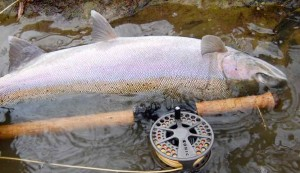 Grand River Steelhead Lamson Konic Fly Reel A