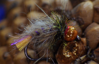 Brown Trout Bug