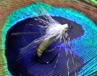 ARM Crane Fly