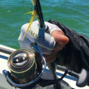 simms-sungloves-daiwa-exit-spinning-reel-aaa