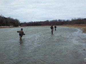Steelhead Tournament - Battling the Wind on the Saugeen River.