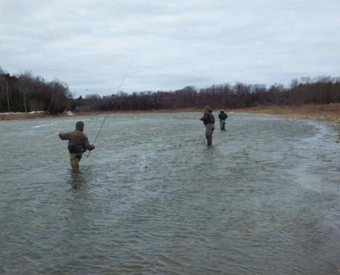 Steelhead Tournament - Battling the Wind on the Saugeen River.