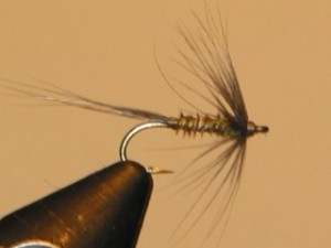 John Hoffmann Wet Fly For the Grand River 1