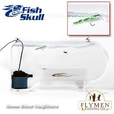 Flymen Fishing Company Fish Skull Swim Tank B