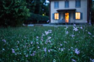 HomeSweetHome-WhitcombInsuranceAgency