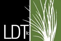 LDT LLC Logo