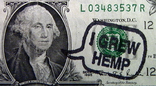 George-Washington-on-Dollar-Bill-I-Grew-Hemp-stoner-quotes