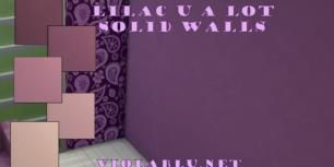 solidwalls-1