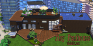 tinypenthouse