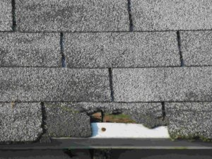 How to replace missing shingles