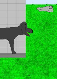 Dog18pix