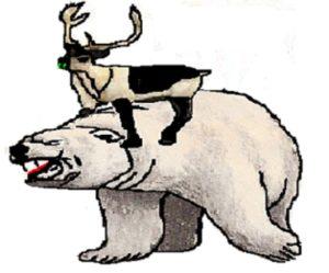 polar-bear-wrestling-1
