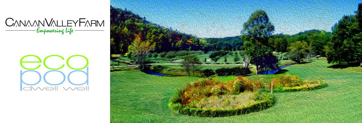 Cannan-Valley-Farm-Banner