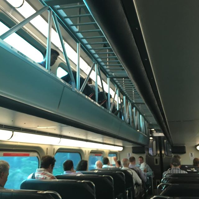 Double Decker trains. See the people up top?