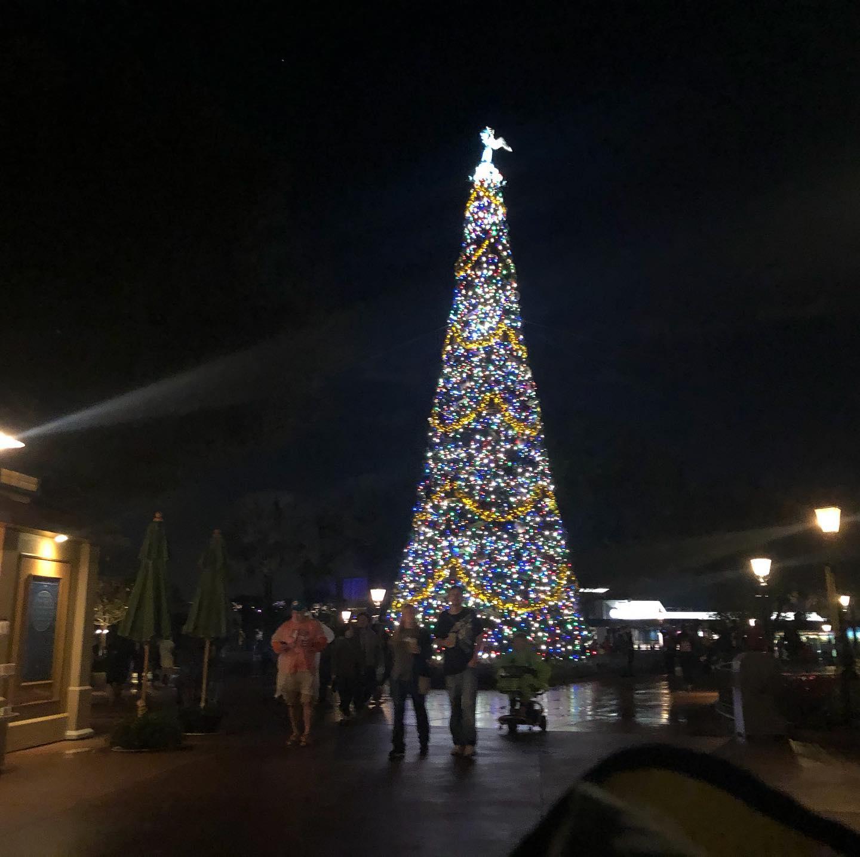 #waltdisneyworld Christmas Tree.