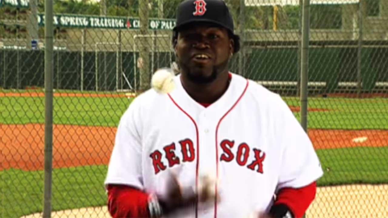 David Ortiz Backyard Baseball