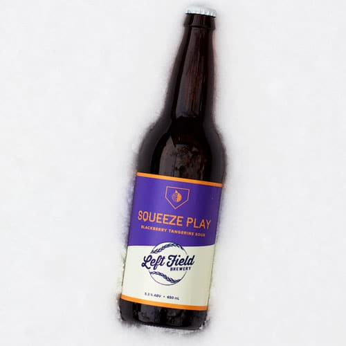 Squeeze Play Blackberry Tangerine - Left Field Brewery