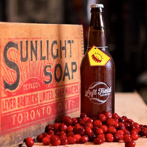 Sunlight Park with Cranberry - Left Field Brewery
