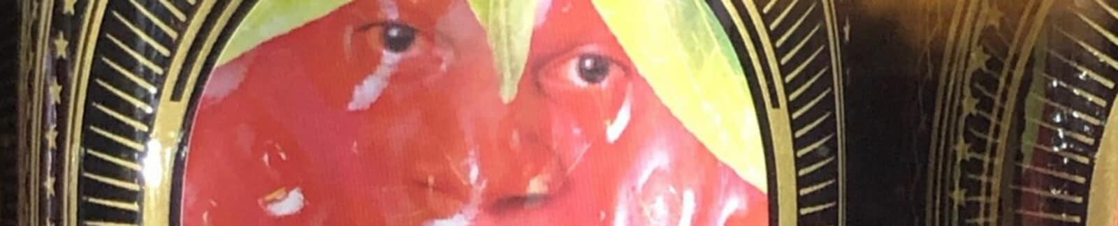 Darryl Strawberry Fruit Ale header