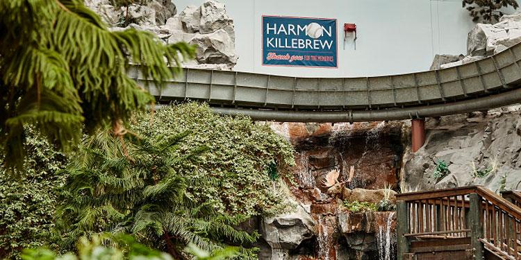 Harmon Killebrew Homer Tribute Chair
