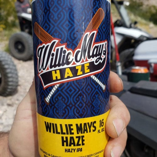 Willie Mays Hazy by The Mitten Brewing