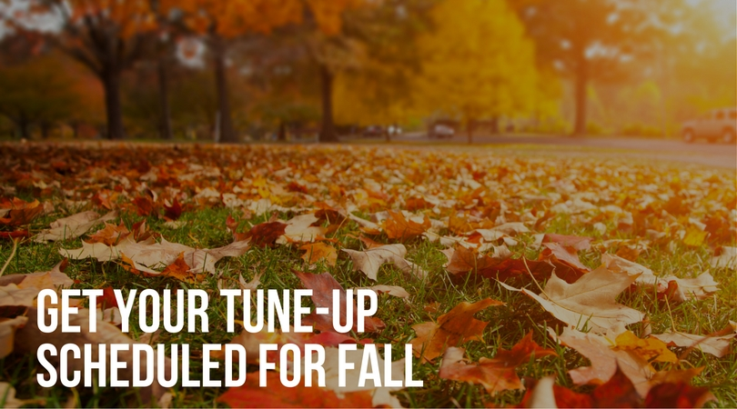 Why Get a Fall Furnace Tune-Up?