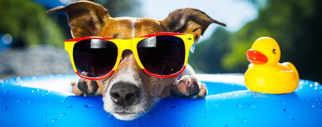 AC Tips to Keep Cool on Hot Summer Days