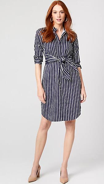 Le Chateau Stripe Cotton Poplin Dress