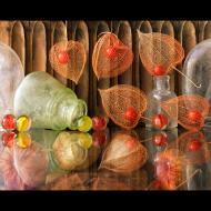 Randy Dana: Lanterns & Marbles