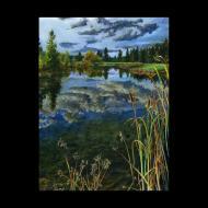 Stan Miller: Qualchan Clouds