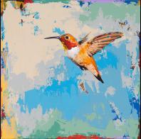 David Palmer: Hummingbird #24
