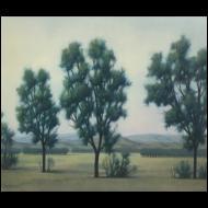 Taman VanScoy: Trees at Dusk