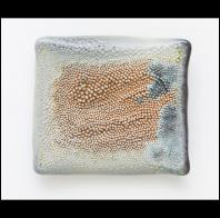Amy Fields: Spiny Wall Pillow