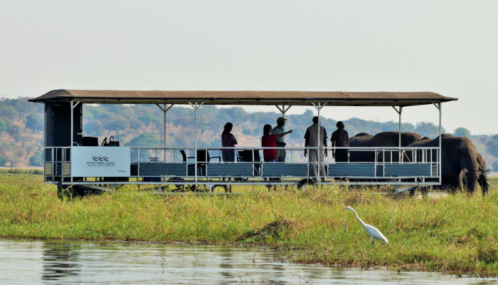 Boat Cruise in Chobe National Park
