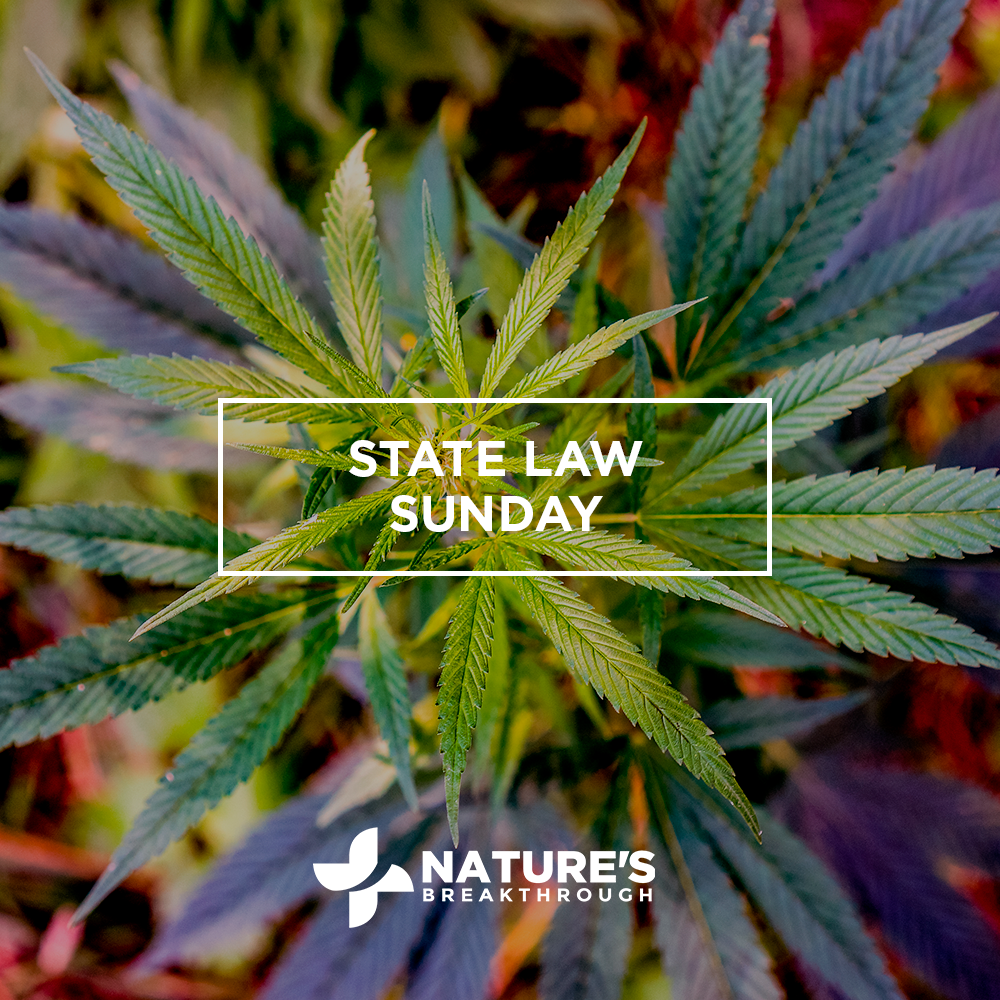 Does Cannabis Regulation in Nevada Overlook Patients and Tourists?