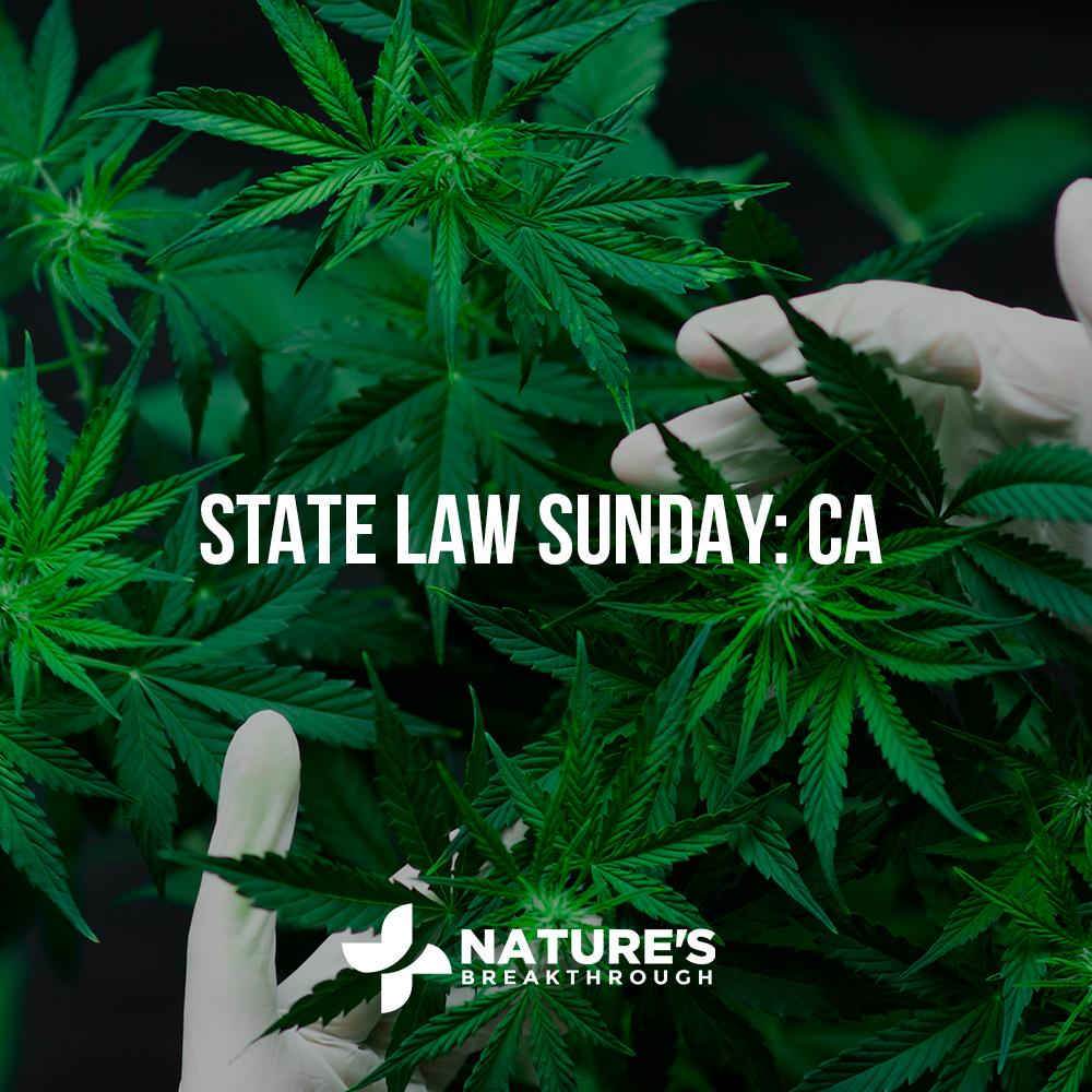 CBD in California: A Legislative Limbo