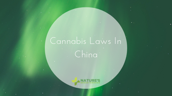 Cannabis Is Illegal in China, But It Produces 50% of the World's Supply