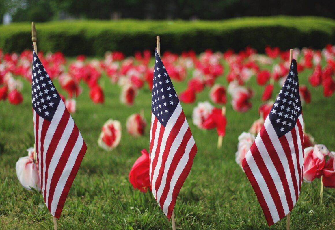 Top 5 Best Hemp Flower Strains for Veterans